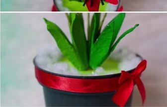 用舊紙板和雞蛋包裝盒制作好看的花藝盆栽