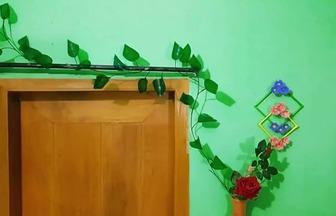 教你用一次性杯子DIY綠蘿藤蔓