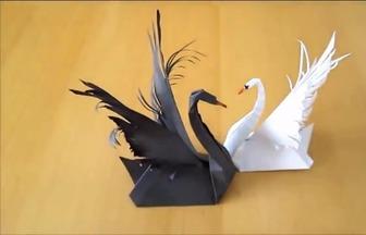 簡單易學的折紙黑白天鵝