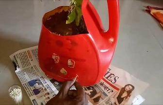 利用洗衣液桶DIY環保家居花盆